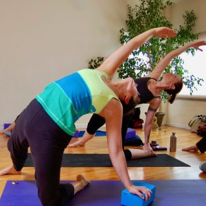 January 6 ~ 200-Hour Yoga Teacher Training Begins Boston University