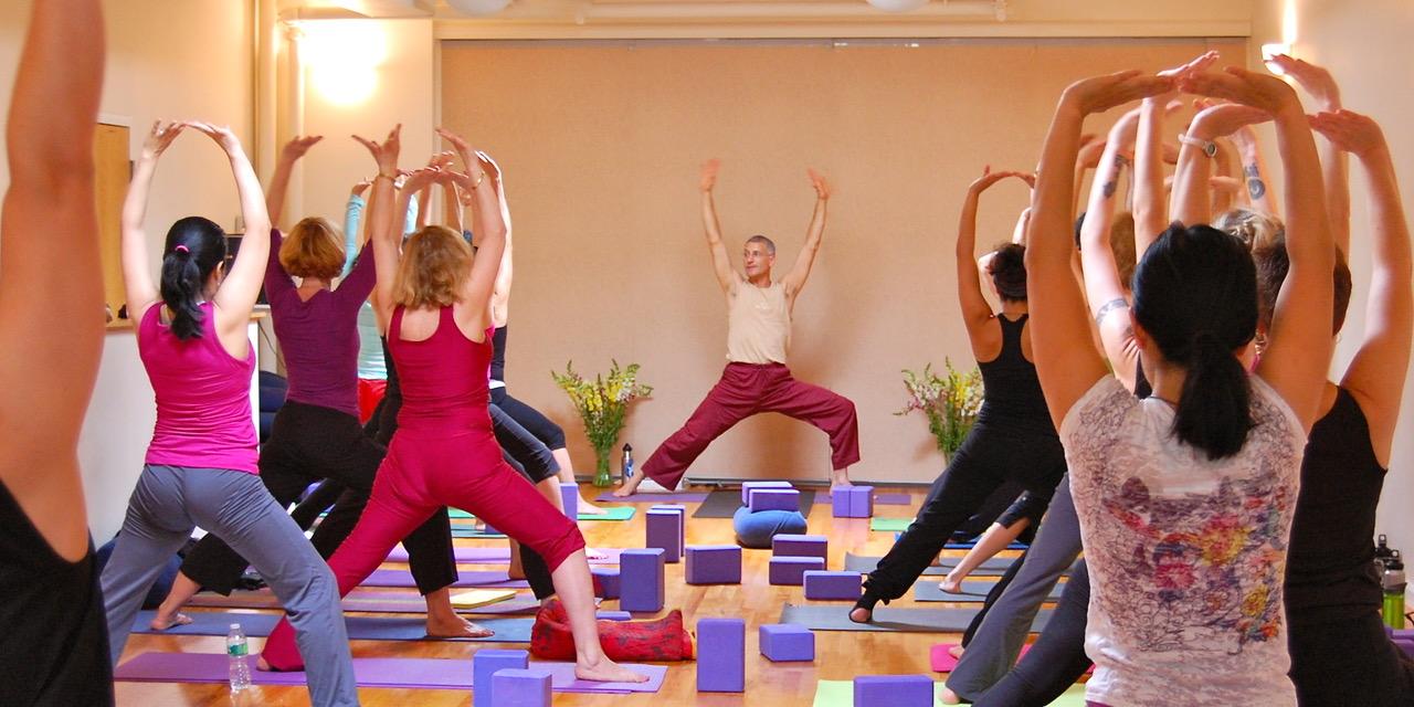 Daniel Orlansky Yoga of Energy Flow 200-Hour Teacher Training