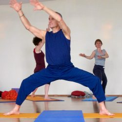 March 13-14 ~ Vinyasa Yoga and Qigong: Awakening to the Flow, A Two Day Live Stream Immersion