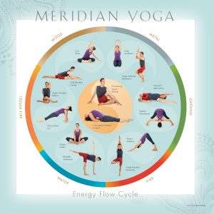 Meridian Yoga Yoga Teacher Training