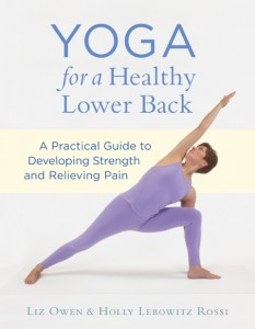 Liz Owen's book used in Boston Yoga of Energy Flow 200-Hour Teacher Training